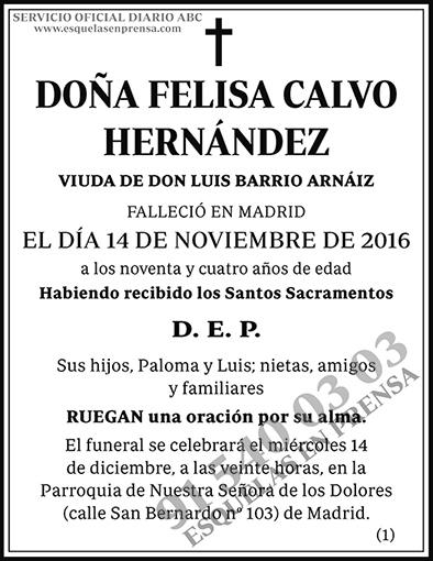 Felisa Calvo Hernández